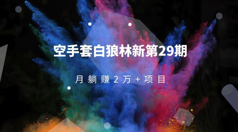 空手套白狼林新第29期:月躺赚2万+项目