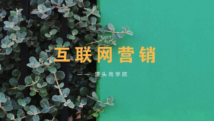 【赠】馒头学院会员课:互联网营销